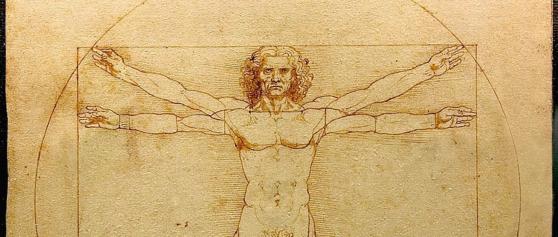 Zur Naturauffassung Leonardo da Vincis…